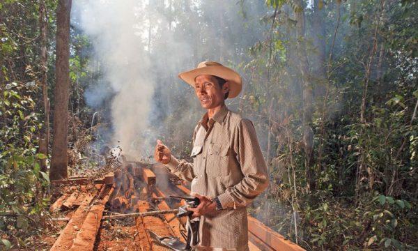 CAMBOGIA: Salviamo Prey Lang, l'ultima foresta primaria dell'Indocina