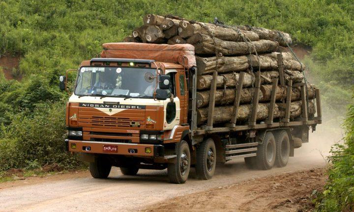 legname dalle foreste laotiane