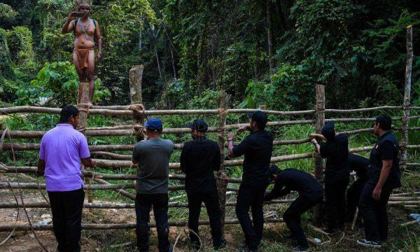 La corsa all'oro del Durian e il diboscamento delle foreste pluviali malesi