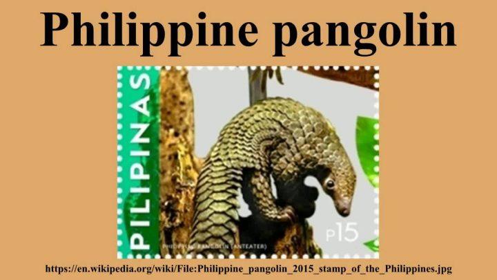 pangolino commercio illegale di fauna selvatica