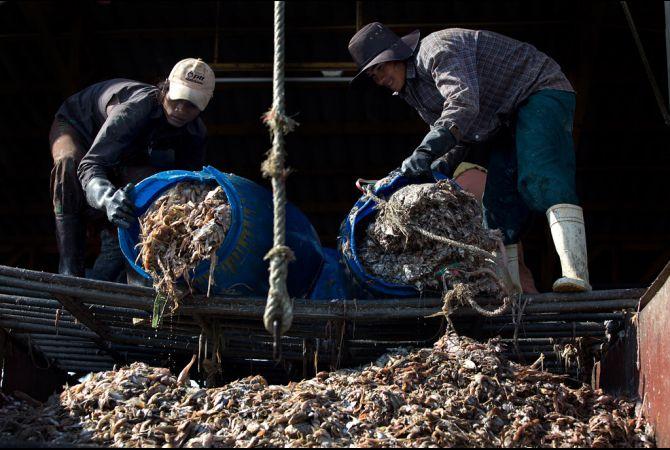 schiavitù lavoro forzato