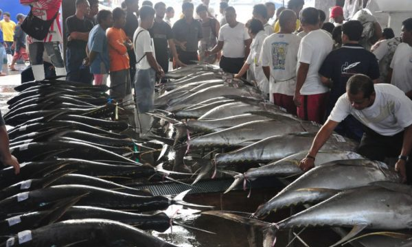 L'industria della pesca a rischio collasso nel Mare Cinese Meridionale